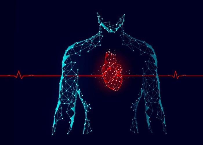 سیستم کنترل ضربان قلب چگونه کار میکند؟